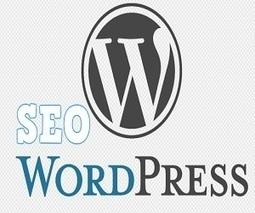 Wordpress Search Engine Optimization Services | SEO | Scoop.it