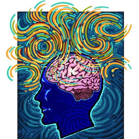 How does the brain work? - Daily News & Analysis | How To Attract Money, Health & Love? | Scoop.it
