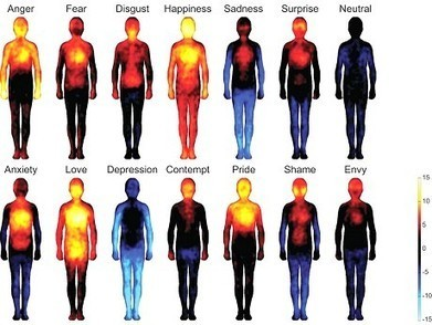 True Colors: Research Sheds Light On Body Emotions - PsychCentral.com (blog)   Emotion   Scoop.it