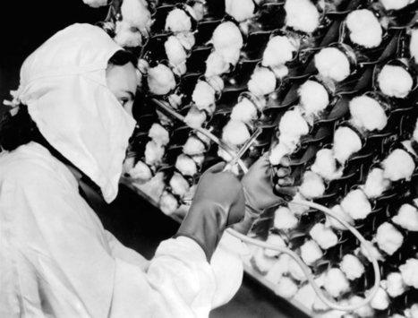 La verdadera historia de la penicilina - Jot Down Cultural Magazine | CTMA | Scoop.it