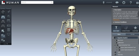 BioDigital Human | Human Anatomy and Conditions in Interactive 3D | 3D - Content & Learning Environments | Scoop.it