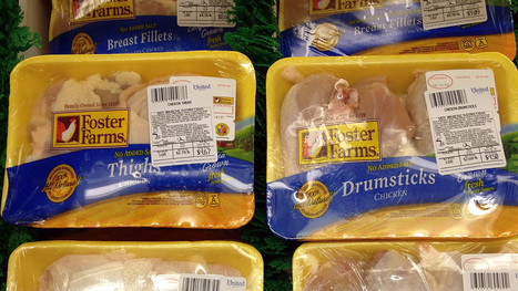Is Foster Farms A Food Safety Pioneer Or A Persistent Offender? | Food issues | Scoop.it