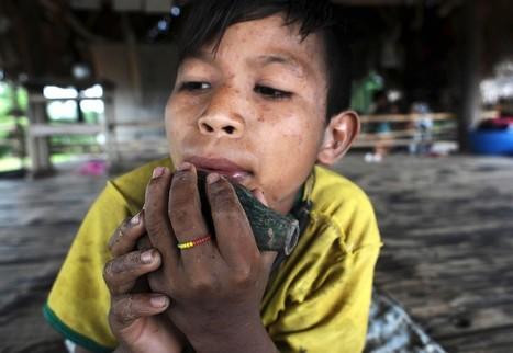 Inheemse volkeren Brazilië worden in hun bestaan bedreigd - In beeld | Inheemse volken. | Scoop.it