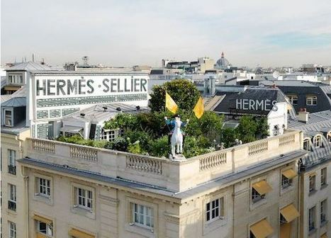 FRANCIA: Por ley los techos deberán estar cubiertos de plantas | Infraestructura Sostenible | Scoop.it