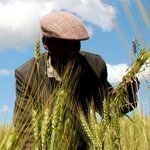 Firms to Invest in Food Production for World's Poor | Vertical Farm - Food Factory | Scoop.it