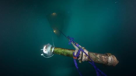 Remains of an Arctic Shipwreck - Archaeology Magazine | Centro de Estudios Artísticos Elba | Scoop.it
