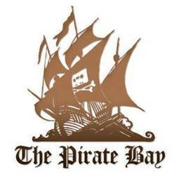 High Court orders six internet service providers to block Pirate Bay access - Irish Independent | Option 1: The five most important technologies in the next 5 to 10 years? | Scoop.it