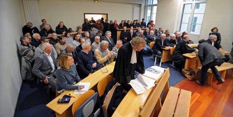 Tribunal de Mont-de-Marsan : amendes et retraits de permis pour les chasseurs d'ortolans - Sud-Ouest | Actualités écologie | Scoop.it