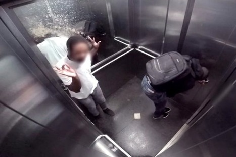 Watch The Most Hilarious/Disgusting Prank Ever: The Elevator Squirting Poop Prank! | mymagedo | Scoop.it
