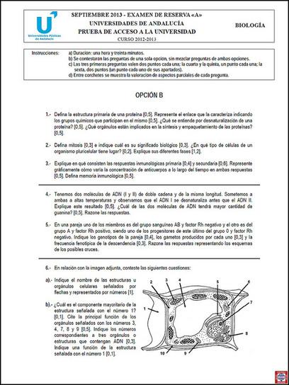 88 2013 (Septiembre) ~ Examen de Reserva de Biología - Opción ... | Biblioteca CCBA | Scoop.it