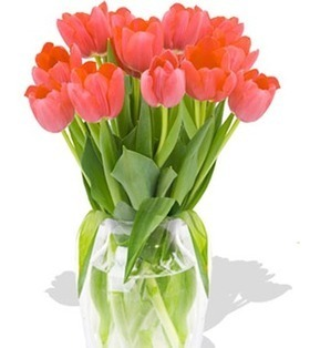 12pcs Pink Tulips Bouquet to your sister on Holidays. – Pink_Tulips_Bouquets#020 | mother's day flower | Scoop.it