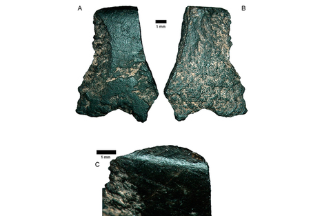 Axe fragment, about the size of a thumbnail, found in Australia 'world's oldest' | Museum & heritage news - Actualités & découvertes musées et patrimoine | Scoop.it
