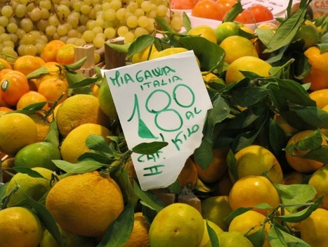 Quality Travel: Making Responsible Food Choices | sustainability topics | Scoop.it
