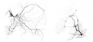 ¿Podría Twitter ayudar a planificar las vías de transporte? | Educacion en la era Digital | Scoop.it