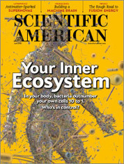 Would You Like a Side of Dirt with That?: Scientific American | forest gardening | Scoop.it