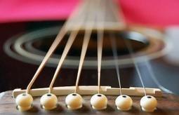L'Acadèmia Catalana de la Música serà una realitat el 2013 | Actualitat Musica | Scoop.it