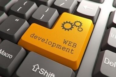 Web Design and Hosting Service   Professional Web Design   Scoop.it