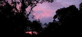 Reves aventures: Costa Rica - MONTEVERDE et SANTA HELENA | Reves aventures | Scoop.it