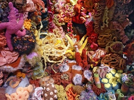 The Crochet Coral Reef Project [25 pics] | Sustainability by Design | Scoop.it