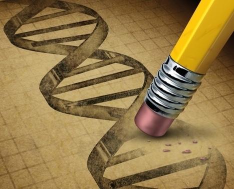Editing policy to fit the genome?   Estudios de futuro   Scoop.it
