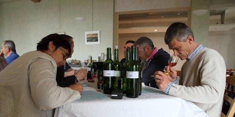 Bergerac : le palmarès du concours des vins | Agriculture en Dordogne | Scoop.it