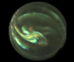 First-ever hyperspectral images of Earth's auroras | Sustain Our Earth | Scoop.it