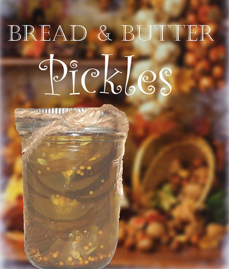 Bread and Butter Pickles Homemade Heirloom Recipe 6 Jars by ilPiccoloGiardino | Candy Buffet Weddings, Events, Food Station Buffets and Tea Parties | Scoop.it