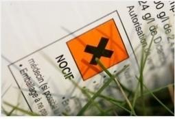 ENVIRONNEMENT: Votre insecticide est probablement cancérigène | 694028 | Scoop.it