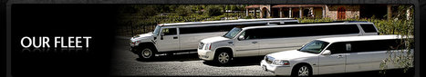 Bay area charter bus rental | Bay Area Limousine Services | Scoop.it