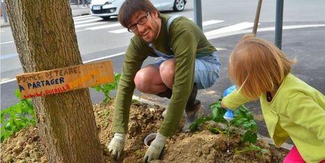 LILLE: Des minipotagers urbains investissent les rues | Végétalisation des espaces urbains | Scoop.it