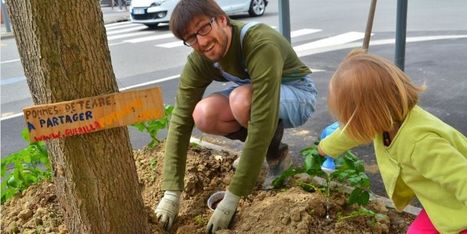 LILLE: Des minipotagers urbains investissent les rues | rngobagal@efficom-lille.com | Scoop.it
