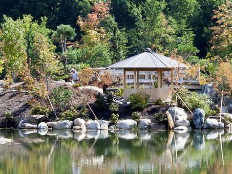 Meijer Gardens gives tram tours of Japanese garden - Lansing State Journal | My Japanese Garden | Scoop.it