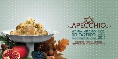 Apecchio, Le Marche: 32nd Truffle Fair | Le Marche and Food | Scoop.it