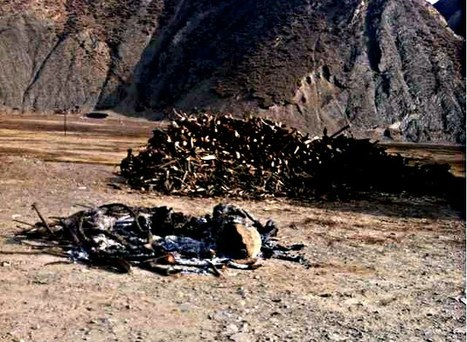 One more Tibetan self-immolates to protest Chinese rule - toll climbs to 111 | Tibet Central | Scoop.it