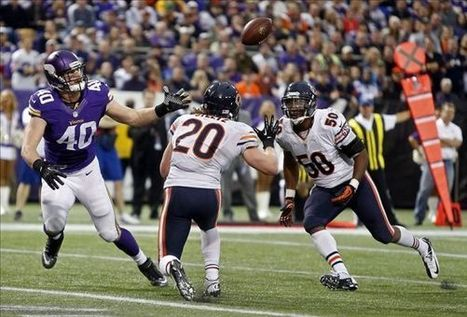 NFL Free Agency: Chicago Bears re-sign Craig Steltz, sign Danny ...   Chicago bears   Scoop.it
