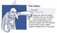 Typologie : les 36 types de fans Facebook | Quand la communication passe au web | Scoop.it