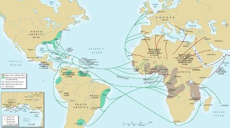 VIDEO: Understanding The Trans-Atlantic Slave Trade: What The Didn't Teach You In School | The Renaissance and Slave Trade | Scoop.it