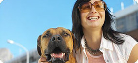 Insurance for Pets | Pet insurance | Scoop.it