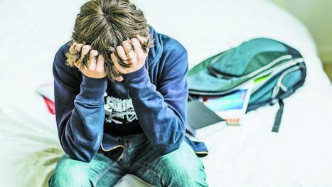 Cada escuela deberá tener un protocolo anti bullying | Docentes:  ¿Inmigrantes o peregrinos digitales? | Scoop.it