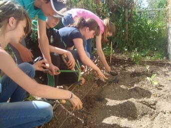 Saint-Bonnet-le-Château. Journée jardinage pour les élèves de 6e ... - Le Progrès   Les bambins au jardin   Scoop.it