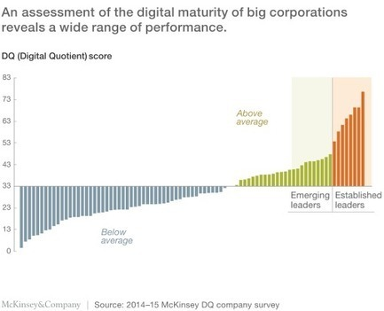 Raising your Digital Quotient | McKinsey & Company | Management - Innovation -Technology and beyond | Scoop.it
