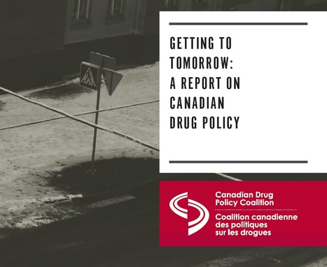 REPORT: Getting To Tomorrow [exploring drug policy beyond prohibition] | NGOs in Human Rights, Peace and Development | Scoop.it