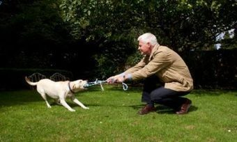 In Defence of Dogs par John Bradshaw | Dog Behavior | Scoop.it