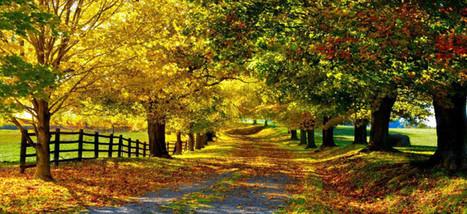 Осень в Европе   Travel the World   Travel The World   Scoop.it