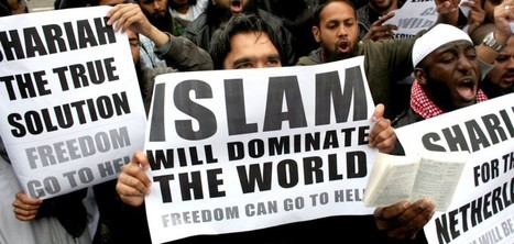 Poll of U.S. Muslims Reveals Ominous Levels Of Support For Islamic Supremacists' Doctrine of Shariah, Jihad | Hodgepodge | Scoop.it