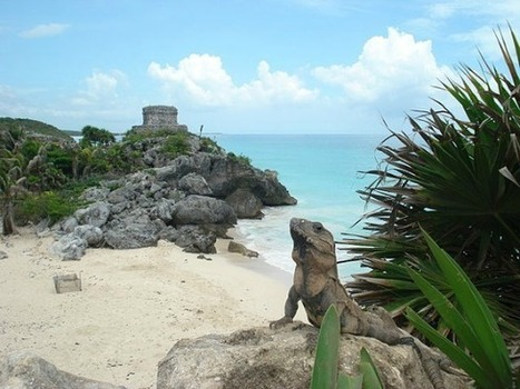 Mexico Travel Warnings - is Mexico Safe for Spring Break Travel?   The Joy of Mexico   Scoop.it
