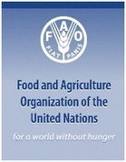Complex causes underpin undernourishment and malnutrition in the ... | malnutrition | Scoop.it