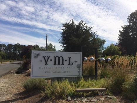 Huneeus Vintners to buy Hambrecht Wine Groups Russian River Valley ...   Healdsburg, California Lifestyle   Scoop.it