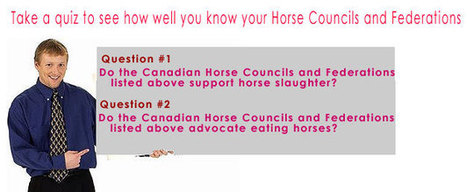 Horse councils and federations that support horse slaughter and eating horse meat in Canada. | horse slaughter | Scoop.it