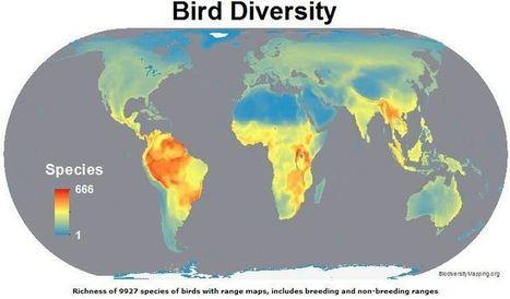 Mapas de la biodiversidad del mundo | Mercados de Medio Ambiente | Responsabilidad social empresarial | Scoop.it